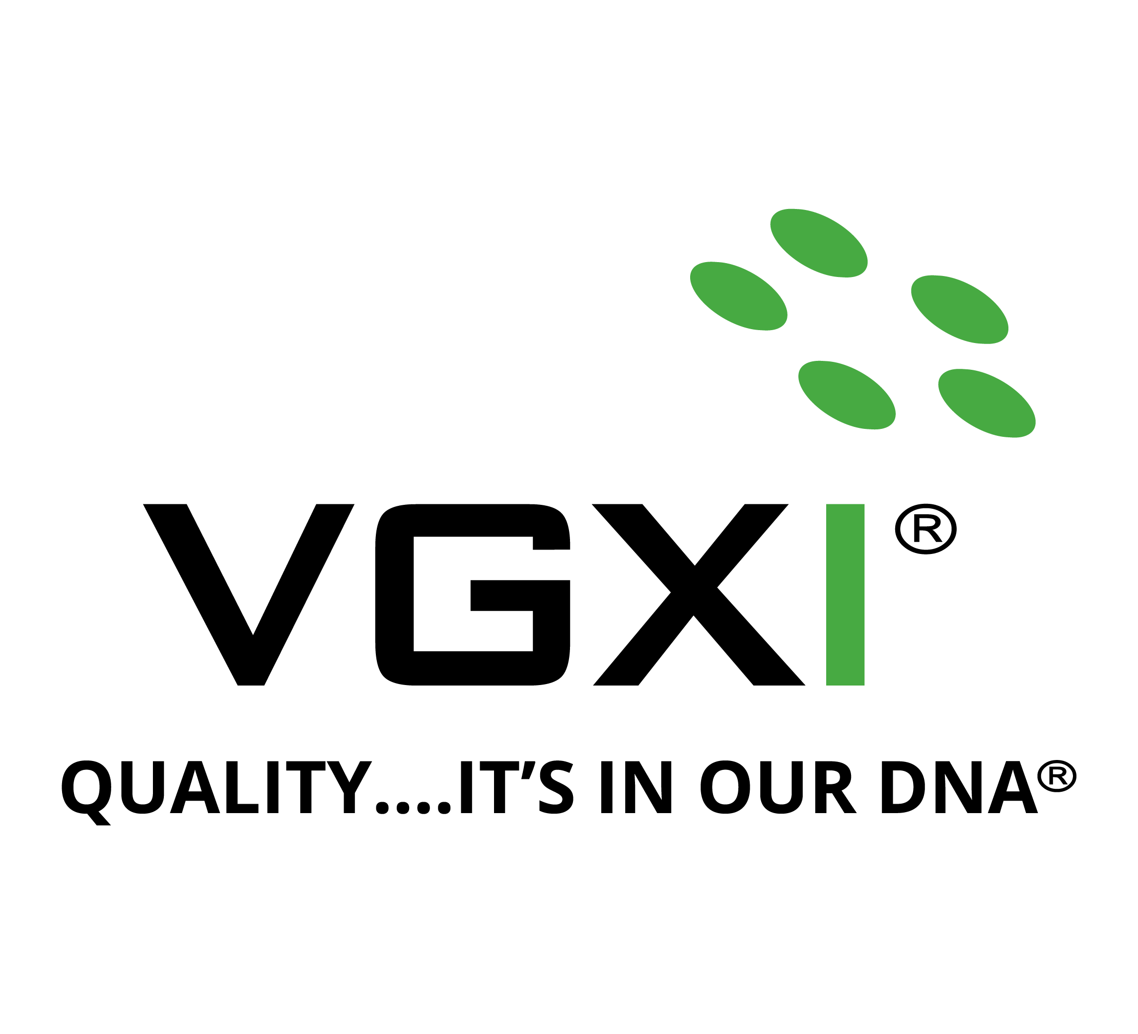 VGXI logo and Quality Tagline_bk gn